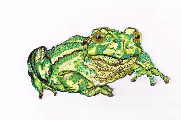 Frog Grn Ylw Tan