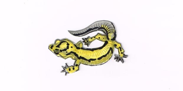 Lizard Leopard Gecko